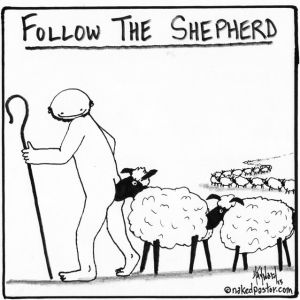 follow-the-shepherd